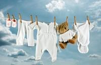 интернет магазины одежды сша